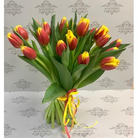 Тюльпаны Тарзан