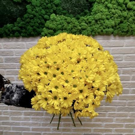 Букет из Хризантемы Селебрети 25шт