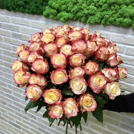 Розы Кабарет 51шт