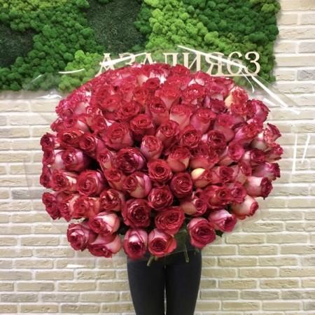 Букет из 101 розы Игуазу 60см